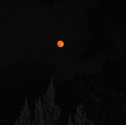 Fullest moon of the year... and red too!