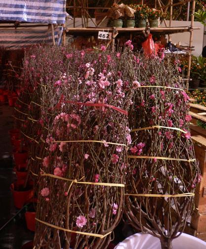 Bundles of flower trees